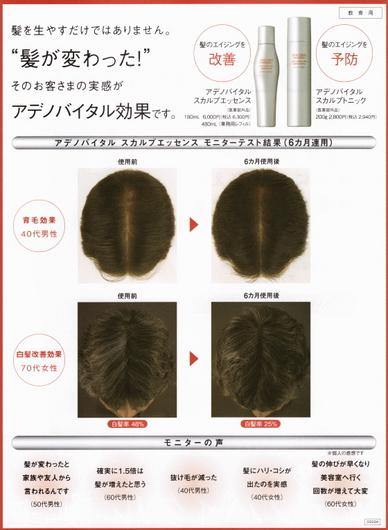 shiseidoimage003.jpg